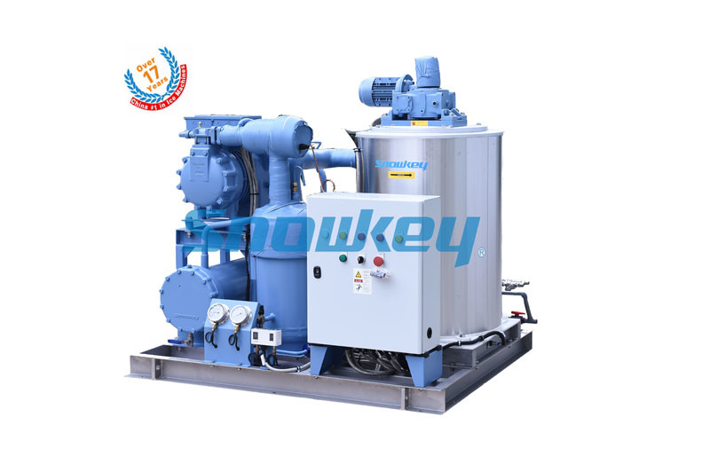 Newest Design 3tons Per Day Seawater Flake Ice Maker Machine for Fishery