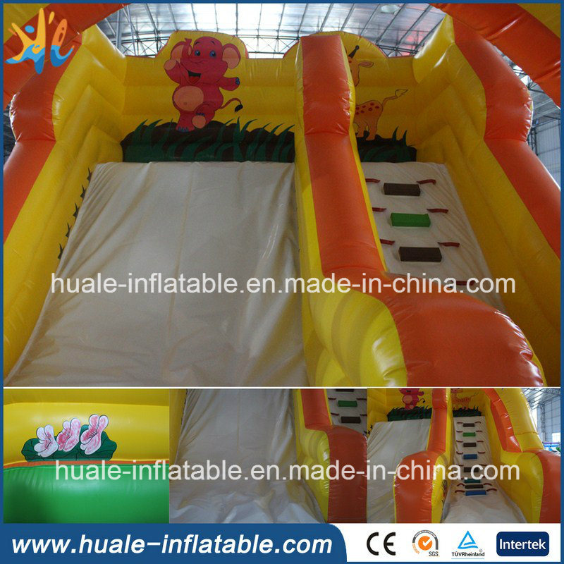 Inflatable Products Water Toy Cartoon Water Slide for Outdoor Game