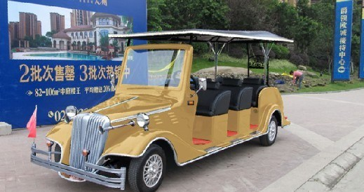 8 Seats Electric Shuttle Bus