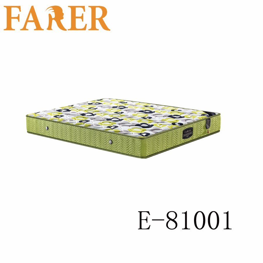 Double Size Coir Fiber Low Price Palm Mattress
