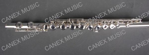 Junior Flute/16 Holes Flute (FL16E-S)