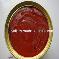 Canned Tomato Paste with 800g