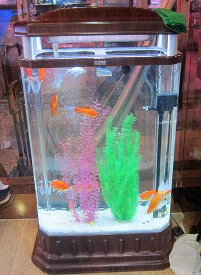 Acrylic Oblong Aquarium, Decoration Fish Tanks for Home or Hotel ...