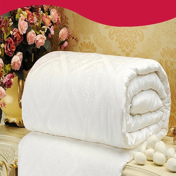 100% Silk Duvet for 5 Star Hotel (DPH4140)