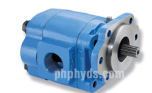 P30/P31 Hydraulic Gear Pump (P3000, P3100)