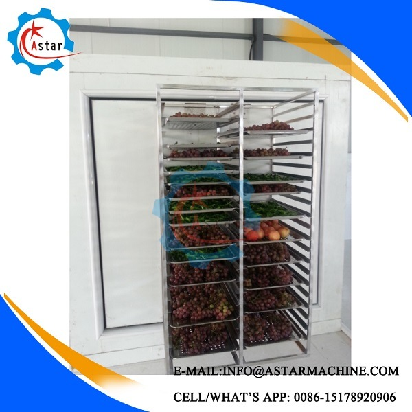 Commercial Refrigerator Commercial Chest Freezer