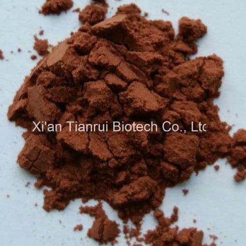 Cacumen Platycladi Extract /Cacumen Platycladi Orientalis P. E