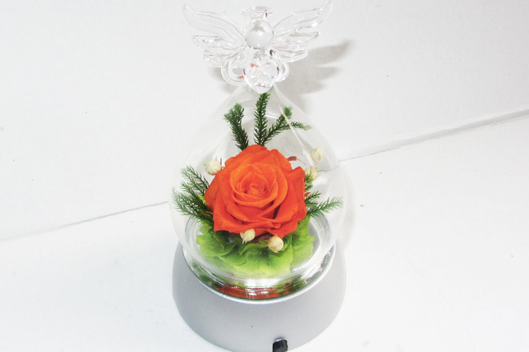Wedding Gift Preserved Natural Roses