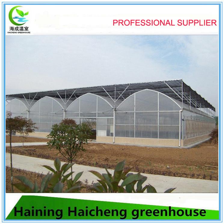 EU Model Single Layer Film Greenhouse for Sale