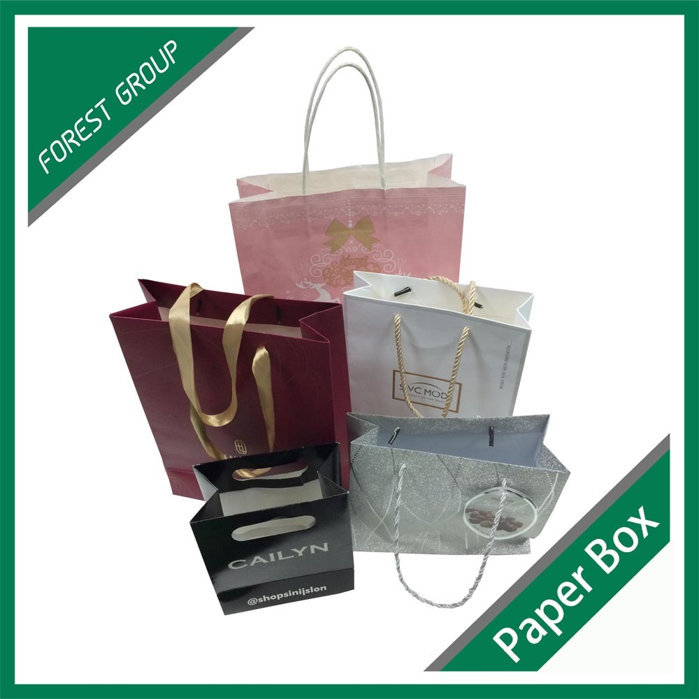 Various Style Custom Made Paper Bag for Shopping