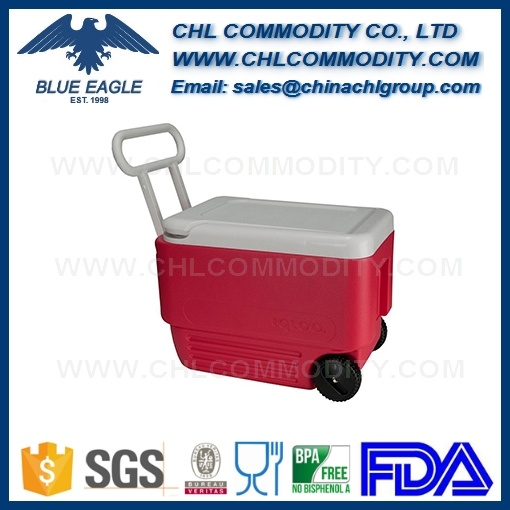 Customized Size and Color BPA Free Cooler Box for Camping