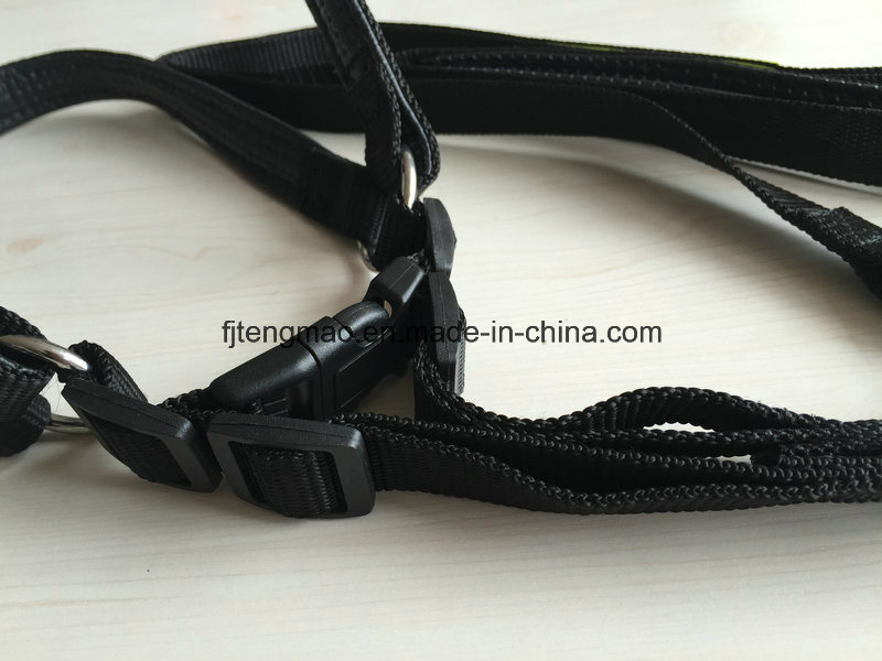 Black Pet Belt