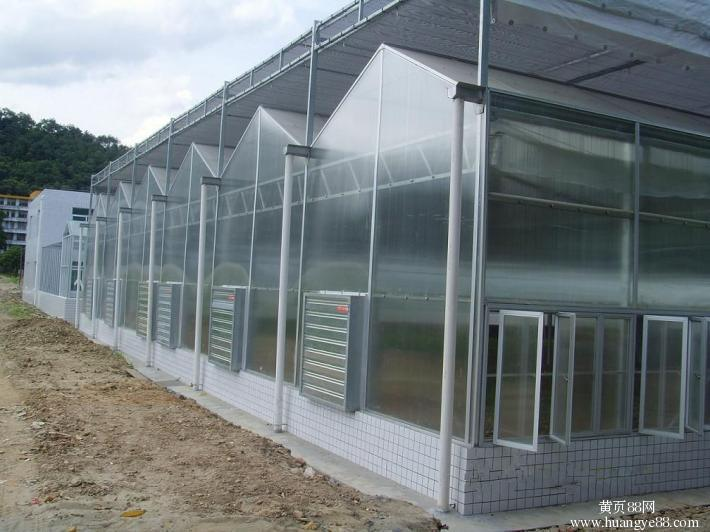 Economical Commercial Polycarbonate Sheet Greenhouse