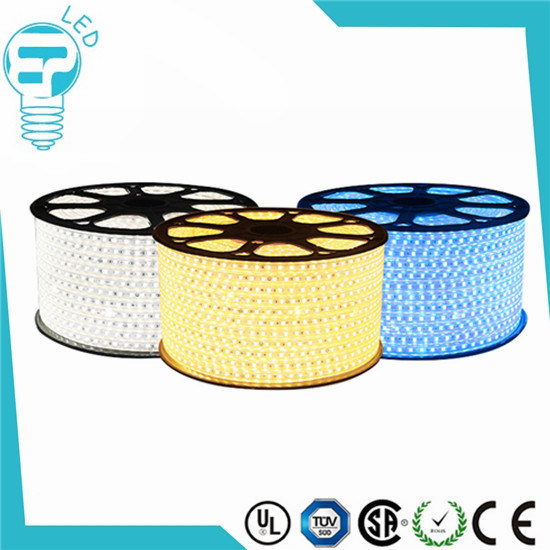 Cheaper Price SMD 5050 DC12V 60LED/M Magic RGB LED Strip