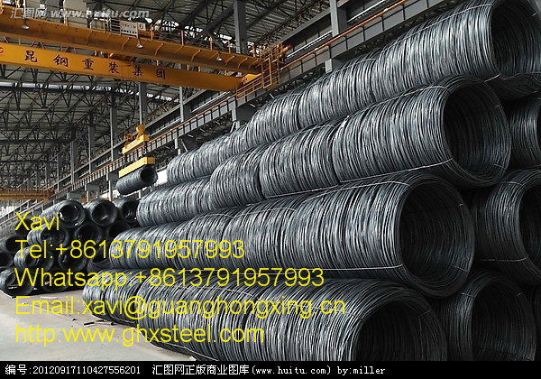 Q235, SAE1006/1006b, SAE10081008/B Hot Rolled Steel Wire Rod