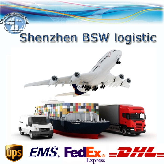International Express (DHL, UPS, FedEx, TNT, EMS) - in Time Delivery