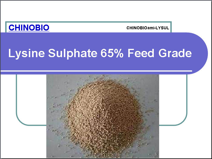 Feed Grade Lysine Sulphate 65% for Animal and Poultry Feed