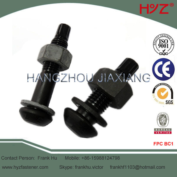 Round Head High Strength Tension Control Bolt 10.9s