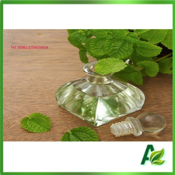 Pure Nature 50% Essential Peppermint Oil Price Mentha Arvensis
