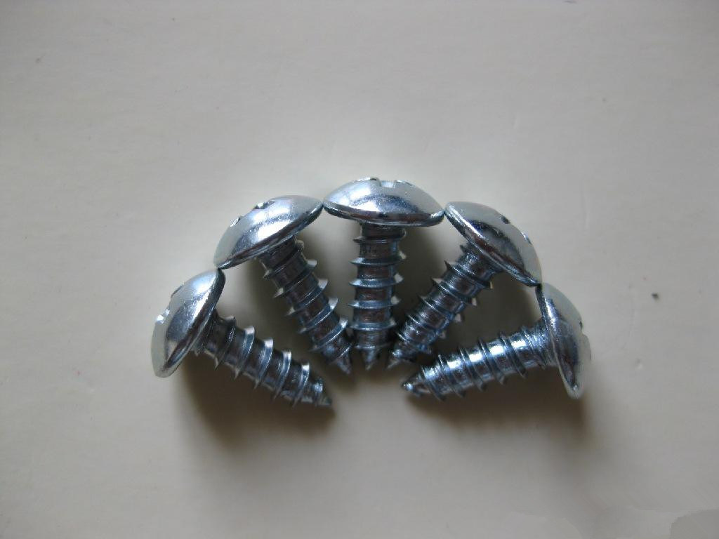 High Quality Self-Tapping Screw with Best Price