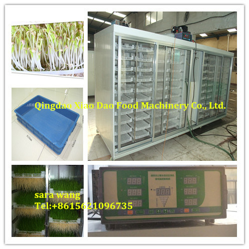 Automatic Hydroponic Bud Seeding Machine, Animal Fodder Machine