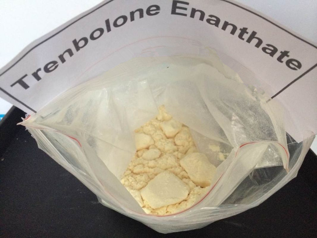 Sustanon 250 Steroid Powder, Trenbolone Enanthate Stack for Rookies