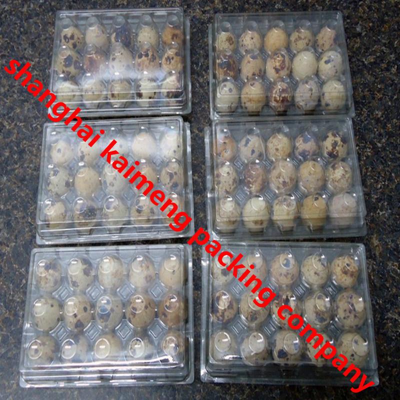 China Clear Plastic Quail Egg Cartons Reusable