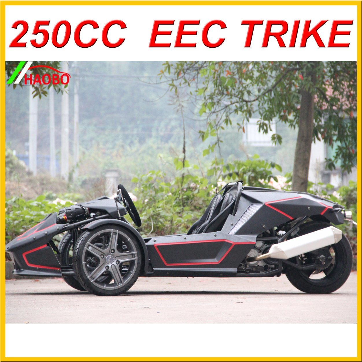 2017 Newest Trike Motorcycle for Adult