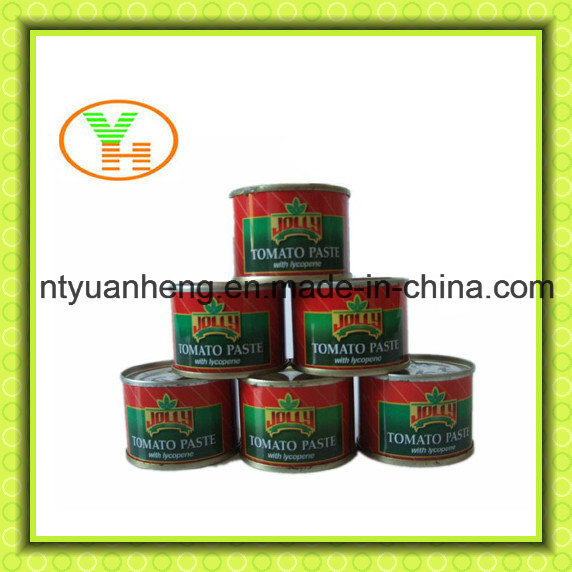 Concentrated Tomato Paste 28 30