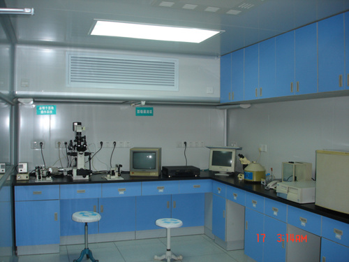 High-Cleanliness Ivf (Test tube baby) Laboratory