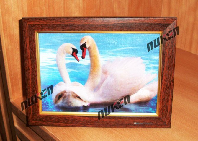 2015 3D Pictures Home Decoration with Animals