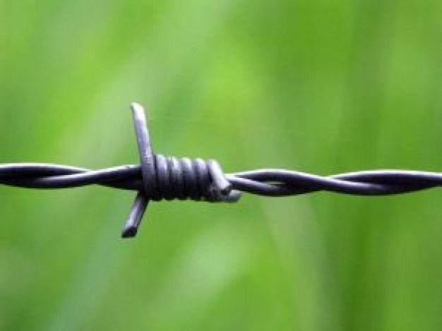 Razor Barbed Wire Mesh Fence-Anping Tianshun Company