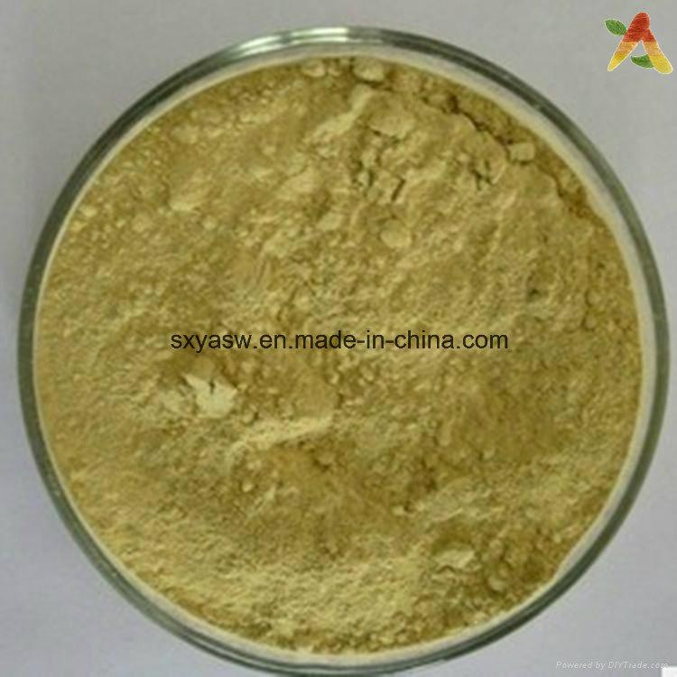 Natural Aloe Vera Plant Extract