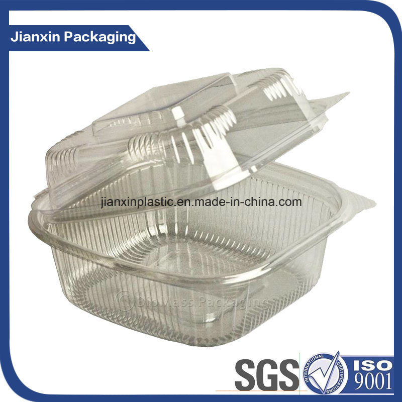 Clear PP Disposable Plastic Food Box Container