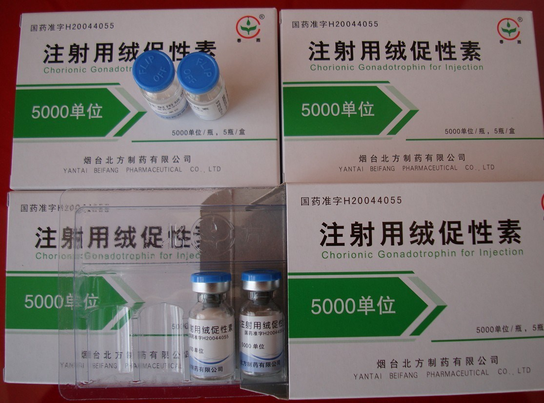 5000iu/Vial Injectable Steroid Hormone Hg Human Chorionic Gonadotropin Chemical