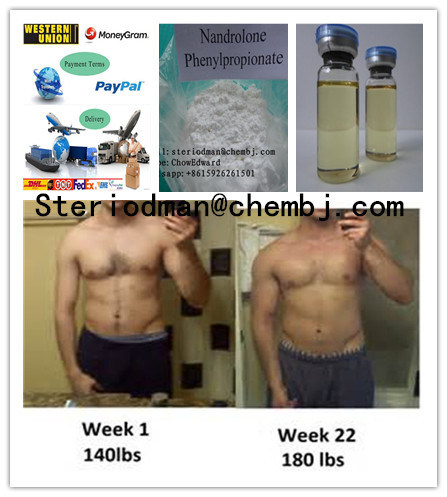 Gaining Muscle Anabolic Steriod Powder Nandrolone Phenylpropionate Npp Durabolin