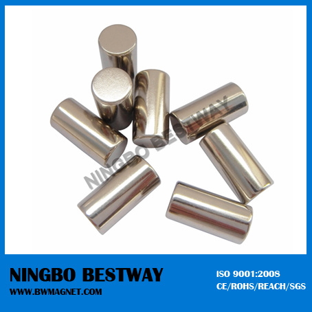 Irregular Shaped Cylinder Permanent Magnet