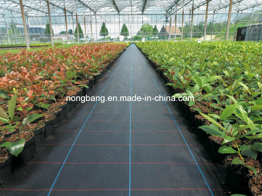 70GSM Black PP Woven Weed Barrier
