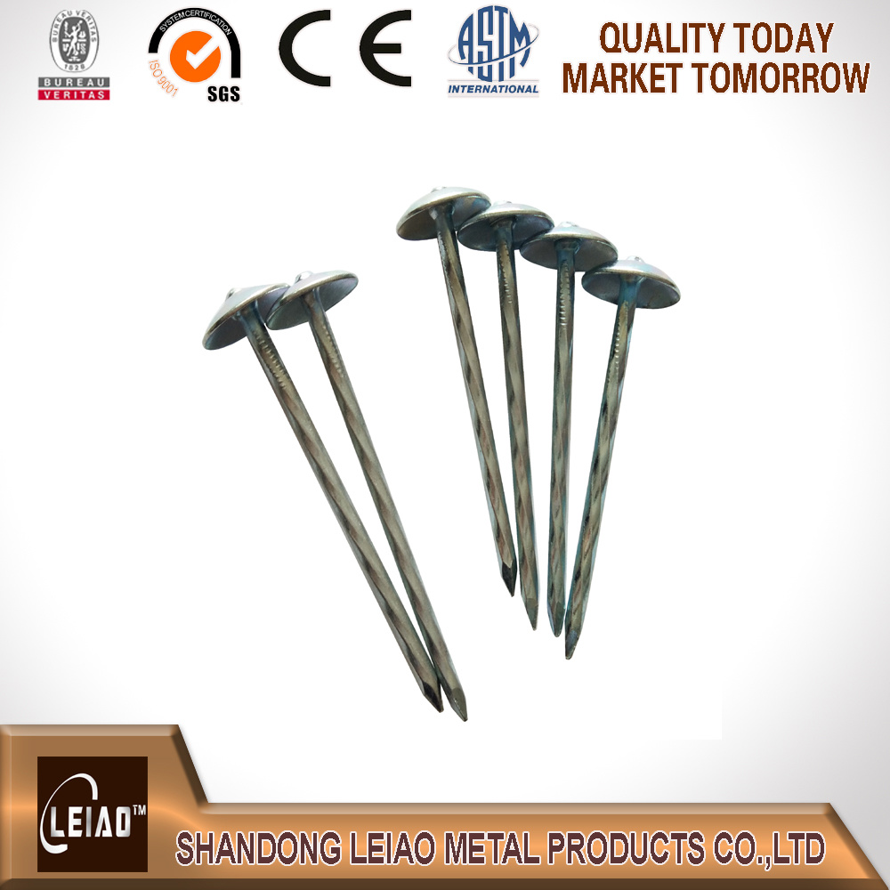 Best Quality Galvanized Roofing Nail