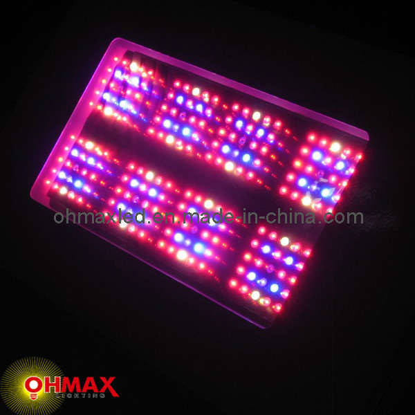 china 600w led indoor grow light for herb growing china led indoor