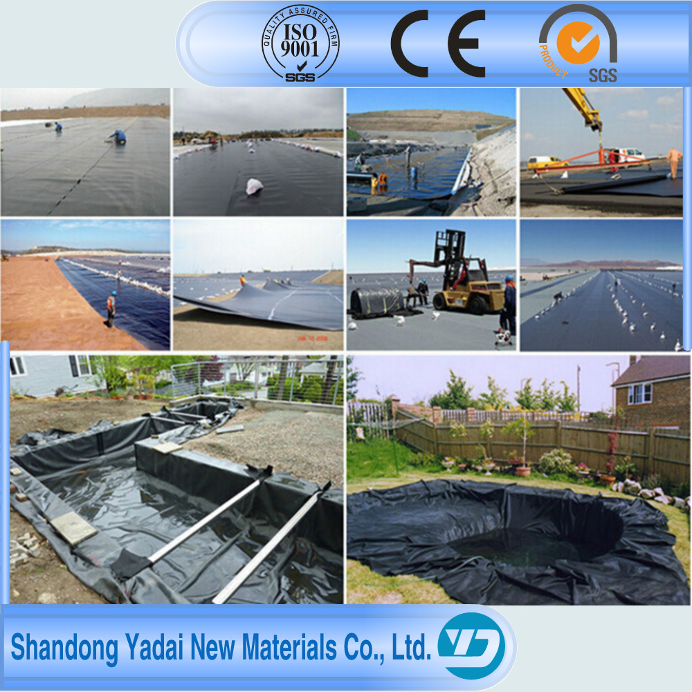 Black Plastic Sheeting Fish Farm Pond Liner PVC Geomembrane for Pool