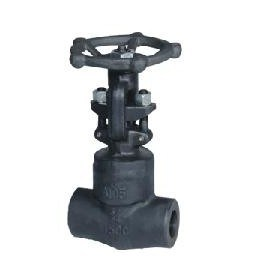 Forged Steel Threaded Globe Valve (J11H-800#)