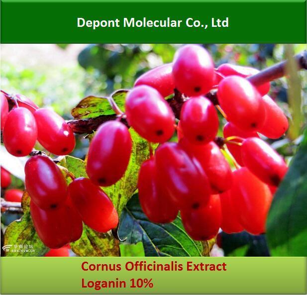 Cornus Officinalis Extract, Loganin, Morroniside