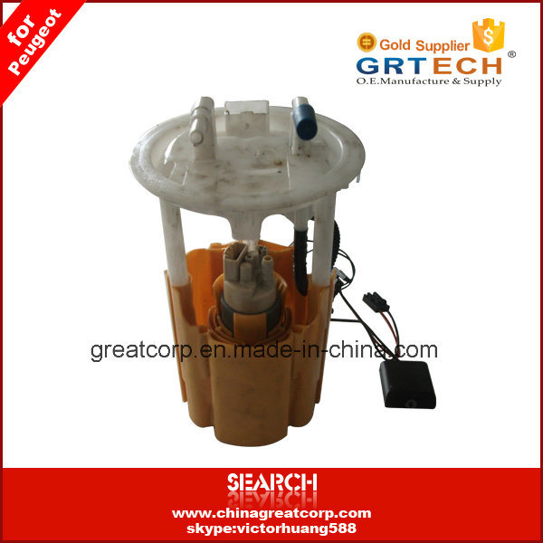 9638028680 High Quality Fuel Pump for Peugeot 206