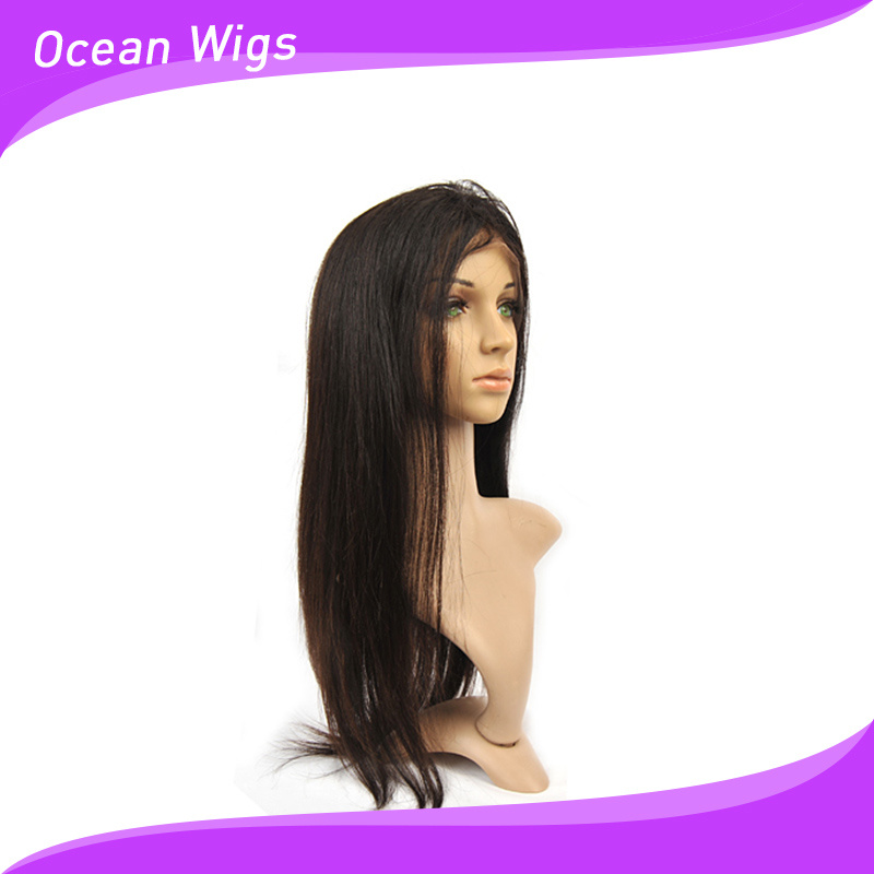 "100% Human Brazilian Virgin Remy 20"" Straight Front Lace Wig"