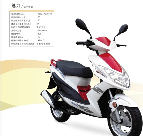 Sanyou Holding Group 125cc-150cc Asia Market Scooter Charme