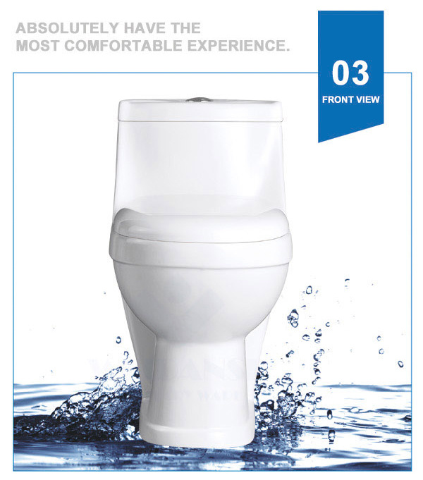 Weidansi Ceramic Wash Down S-Trap One Piece Toilet (WDS-T6117)