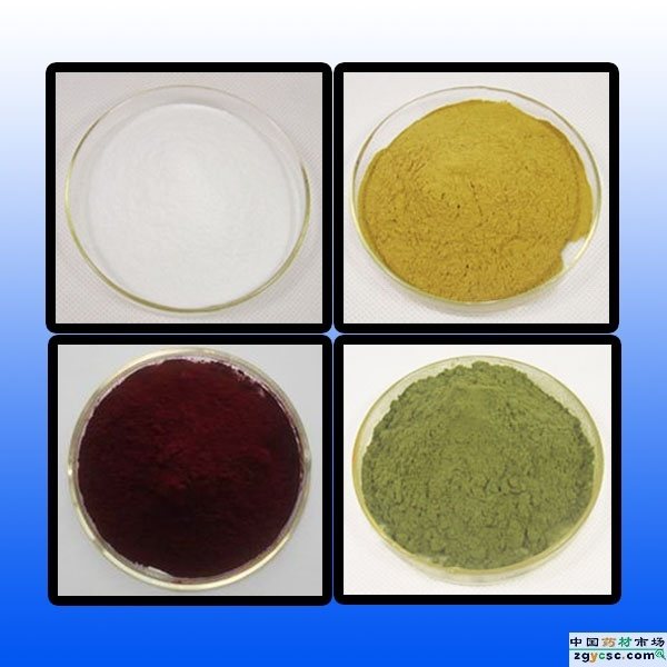 98% Rutin From Sophara Japonica Extract