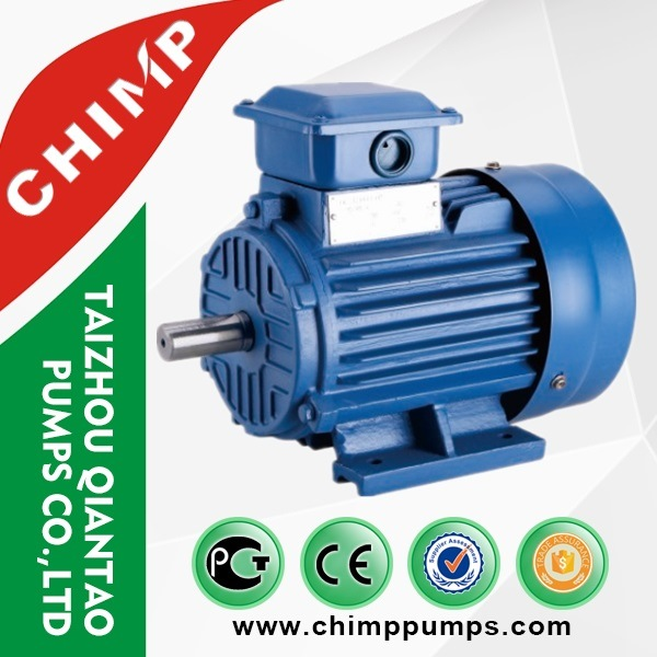 Y2 2pole/4pole Cast Iron Three Phase Electric Motor with Ce