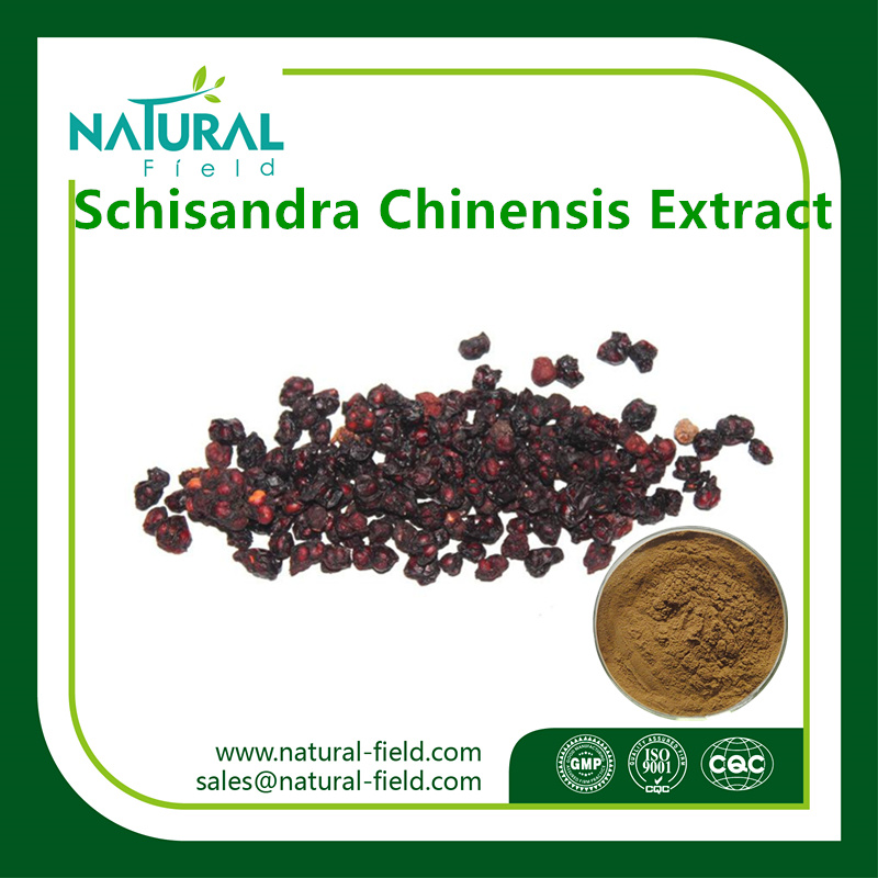 High Quality Schisandra Chinensis (turcz.) Baill. Fruit Extract Powder/Schisandra Berries Extract